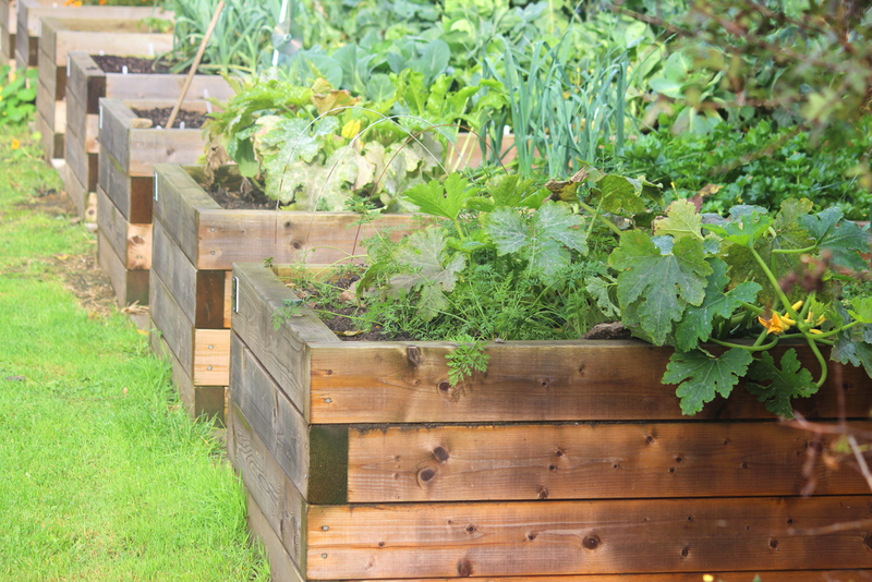 Similar to these traditional raised beds, a keyhole raised bed not only gets you gardening sooner in spring, but also saves space.