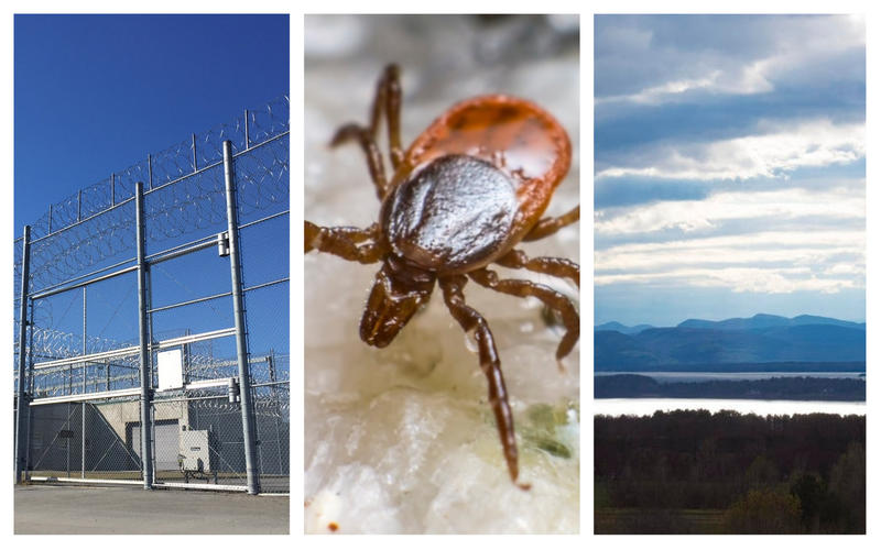 A photo collage featuring, from left, the exterior of a prison, a close-up of a tick, and a Vermont landscape.