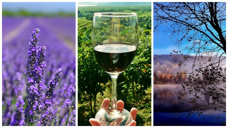 Lavender farms, wine routes and natural beauty abound in Quebec's Eastern Townships. What are your favorite destinations in the region?