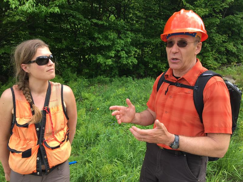Alexandra Kosiba dn Paul Schaberg teamed up to study red spruce recovery and