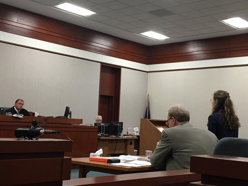 Environmental Court Judge Thomas Durkin listens as Conservation Law Foundation lawyer Elena Mihaly argues Monday that the court should reject nine sewage treatment plant permits.