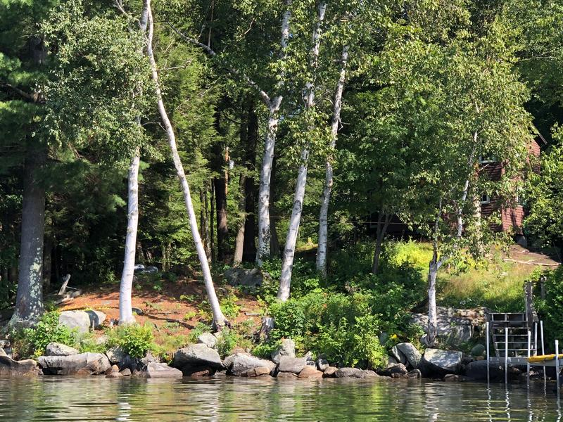 Shoreline camp improvements may include planting a rain garden and installing terraced gravel steps.