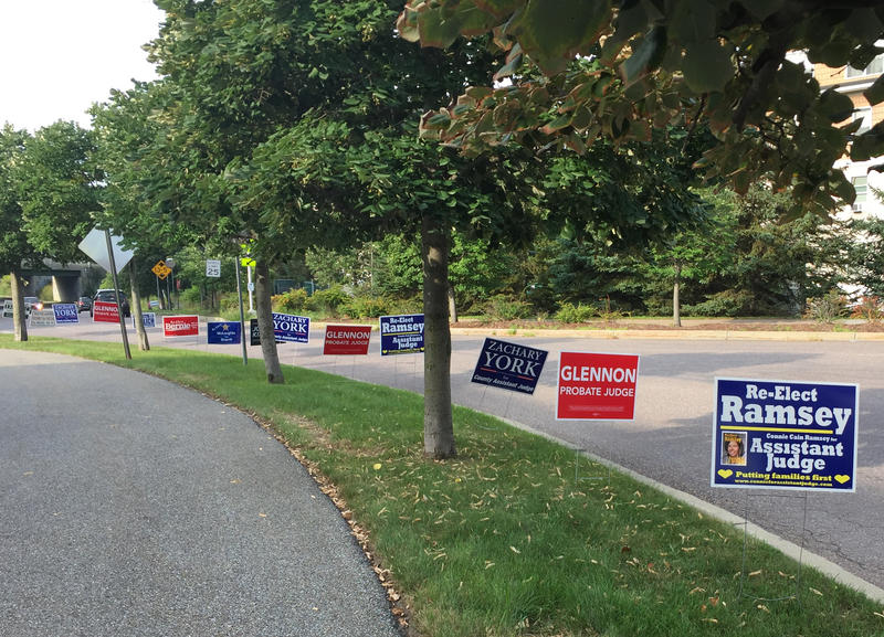 Signs for various candidates line up along Farrell Street in South Burlington on Monday