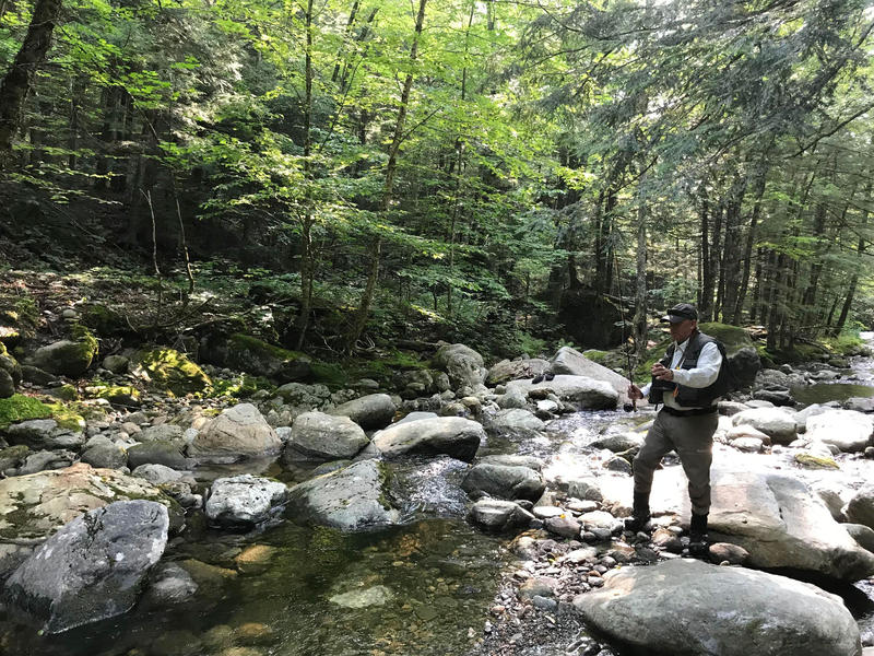 John Conrad, a fly fishing guide for The Fly Rod Shop in Stowe, fishes for brook trout in a stream.
