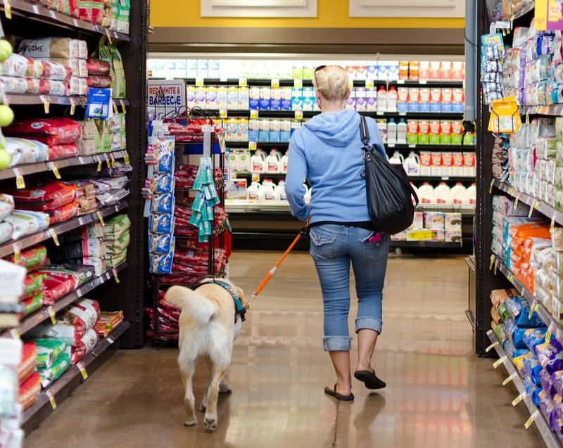 Emotional support animals are increasingly found in public places like stores, businesses and school campuses.