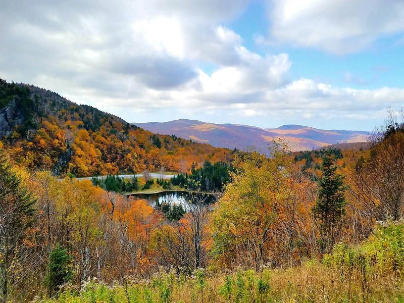 VPR listener Geri Knortz shared this image of Vermont foliage along Route17 and the Appalachian Gap near Buels Gore.