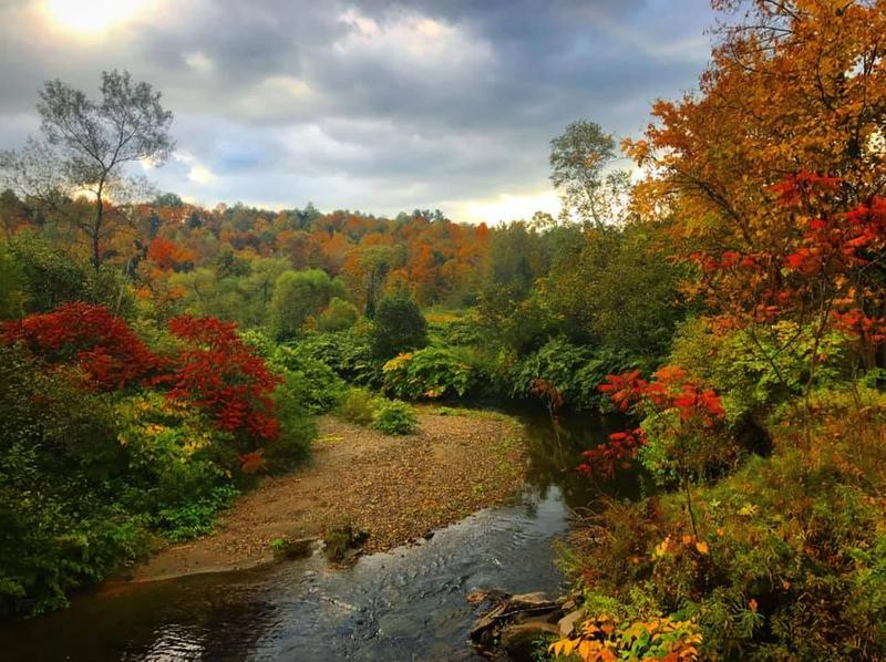 Matthew Yablonowski snapped this image of a autumnal riverbank near Morrisville on Wednesday, Oct. 10.