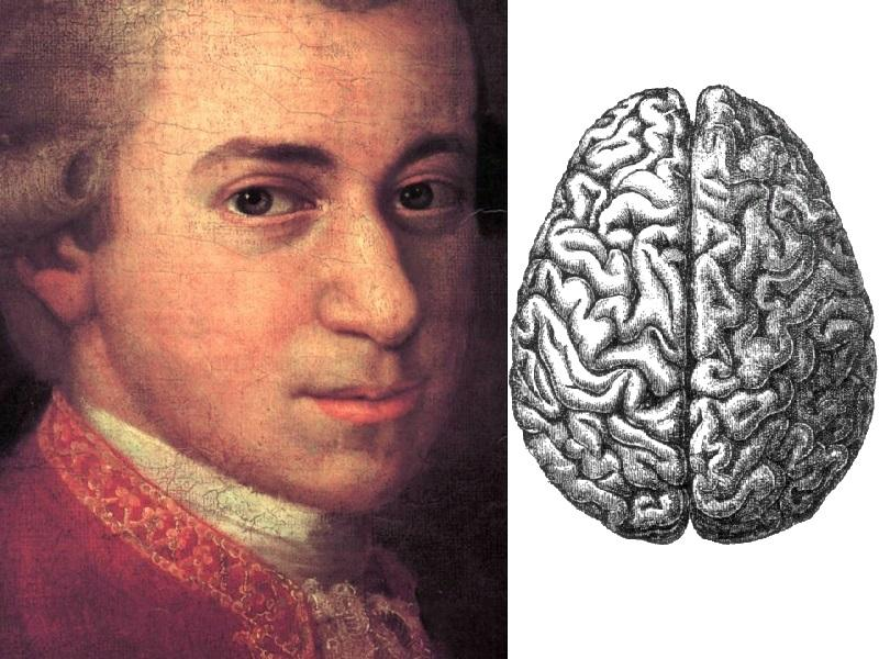 The Mozart Effect suggests that listening to Mozart's music could increase the cognitive ability of developing brains.