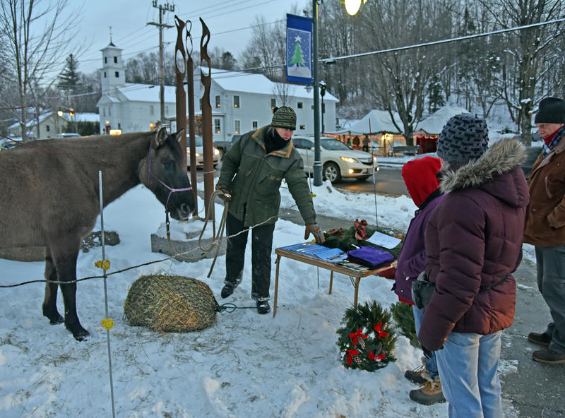 Stephanie Lockhart, Founder of the Center for America's First Horse in Johnson, and a current resident there, sells wreaths with an equine friend at Johnson's Jubilee.