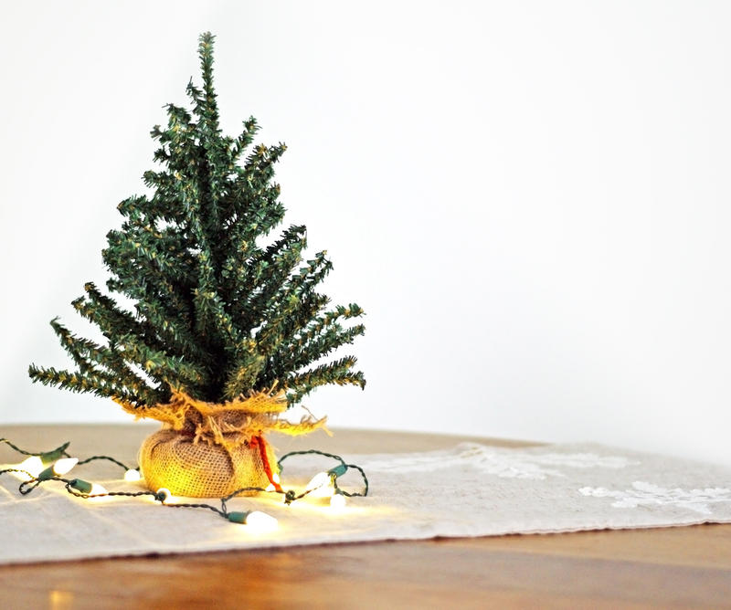 Small fir, spruce or pine trees can be grown in containers and turned into beautiful tabletop holiday decorations.