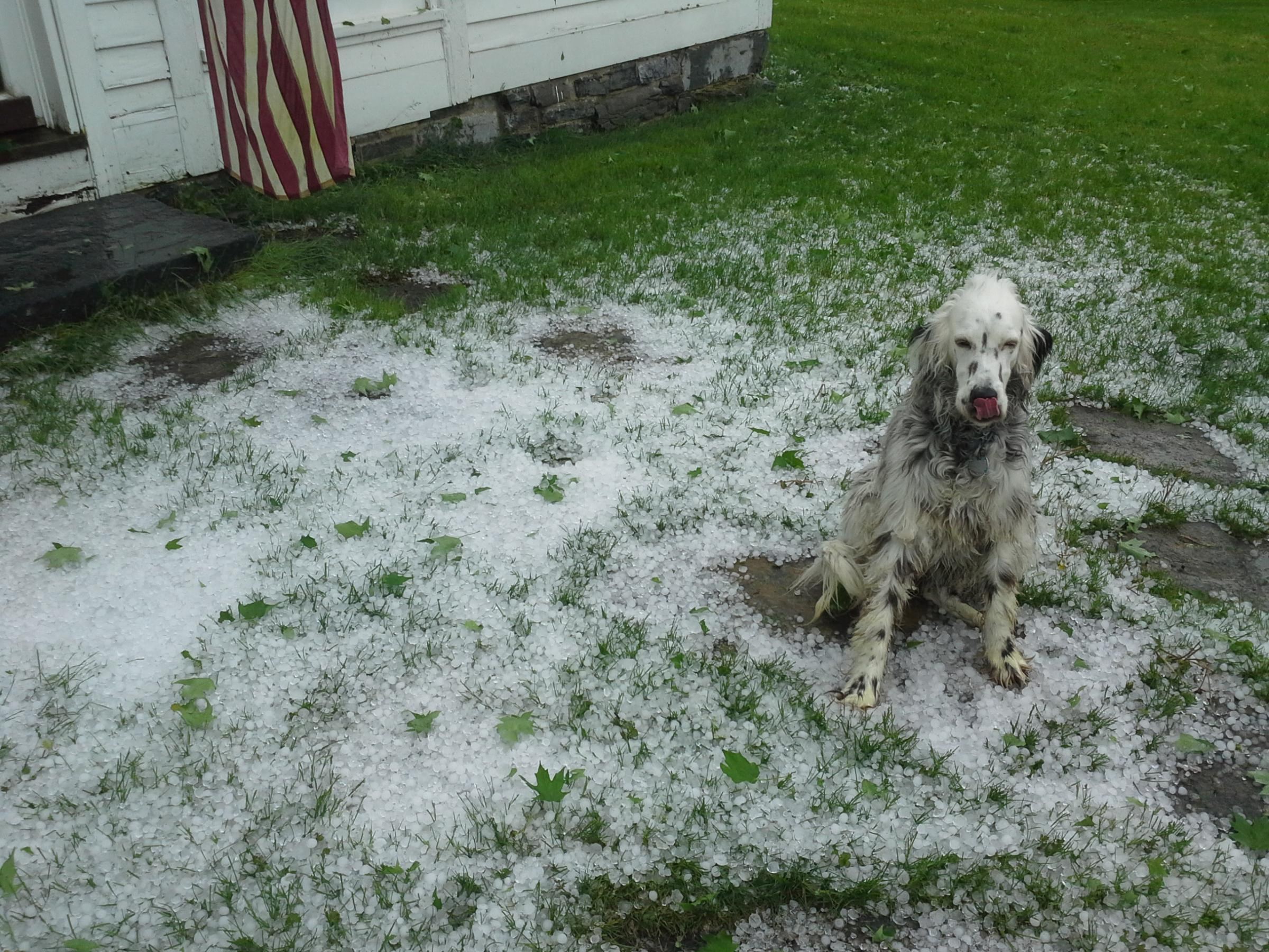 large hail but no tornado in central and southern vermont
