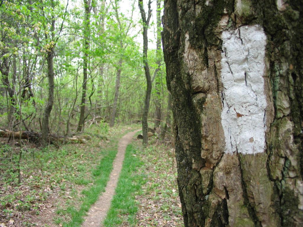 21 Appalachian Trail Statistics That Will Surprise