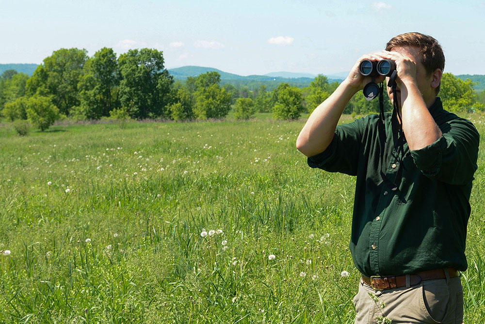 Lemon fair wildlife management area gains 330 acres for Vermont fish and wildlife jobs