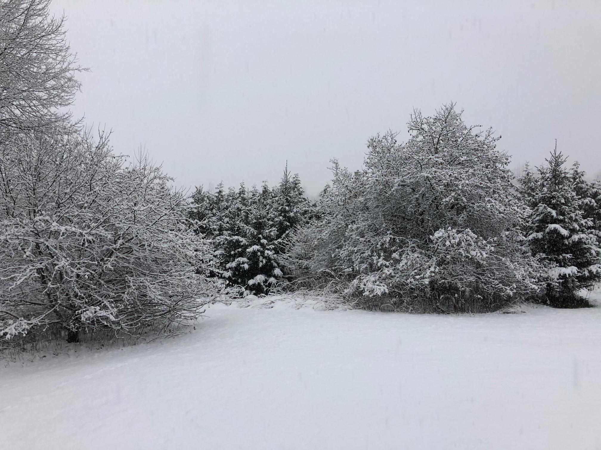 snow arrives in northern new england vermont public radio