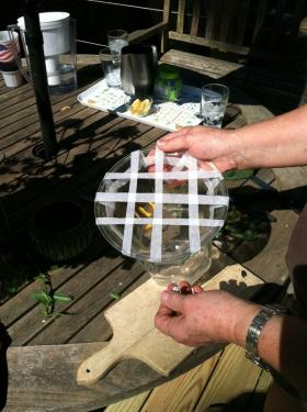 Create a grid like this one using gardening tape, to keep your flowers in place.