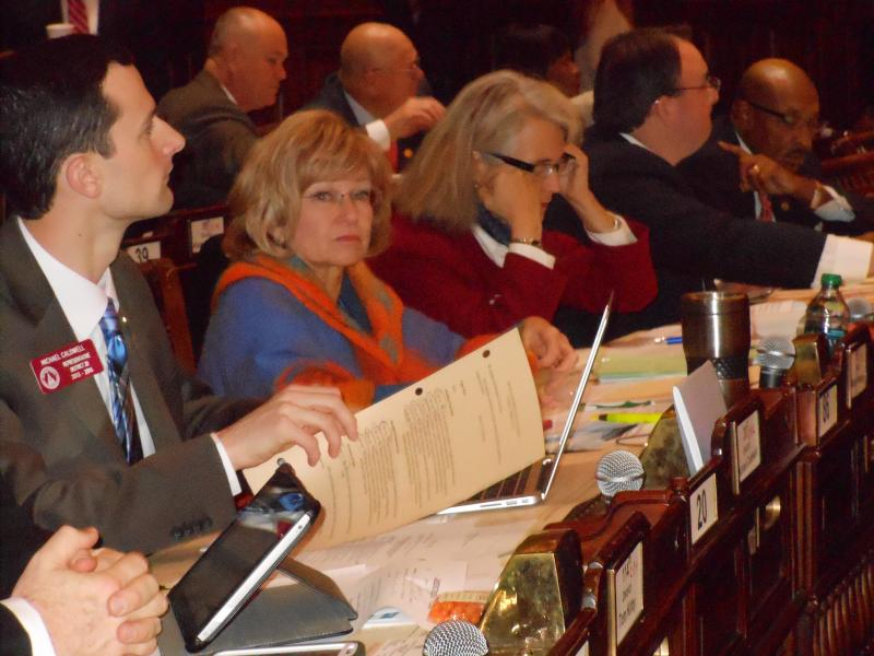 Representatives Michael Caldwell (R-Woodstock), Michele Henson (D-Stone Mountain), and Karla Drenner (D-Avondale Estates)