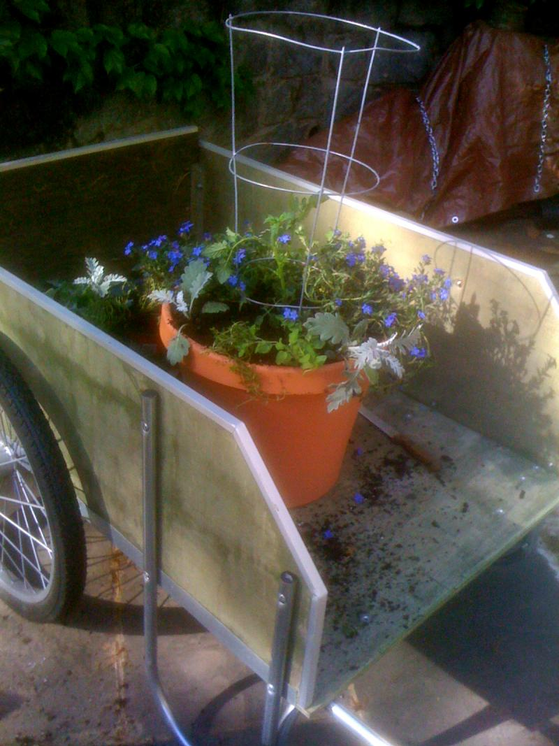 Planting a container garden