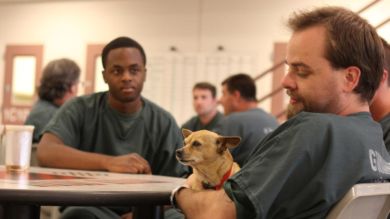 Jail officials say inmates often get bonded to their dogs.