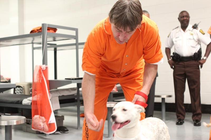 John Mari gives Daphne a treat at the Fulton County Jail.