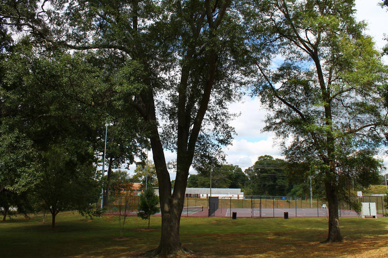 Tennis and basketball courts at Maddox Park