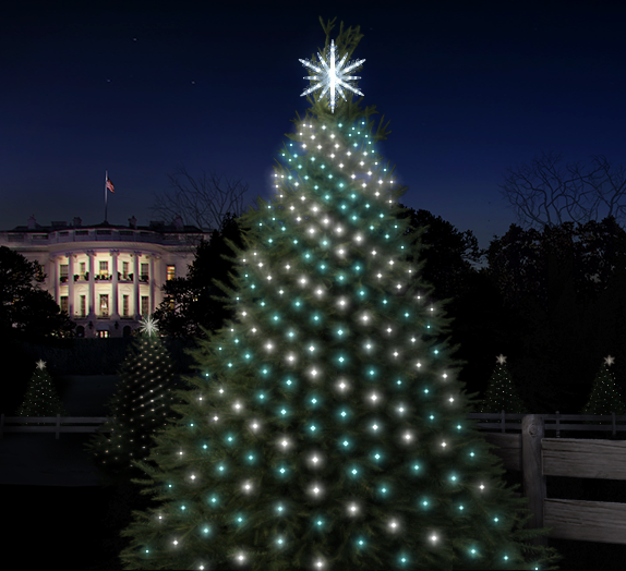 On the website madewithcode.com, users can program lights on trees near the White House.