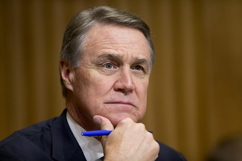 U.S. Sen. David Perdue told DeKalb business leaders Tuesday that Congressional Republicans need to work with Democrats to pass new health care legislation.