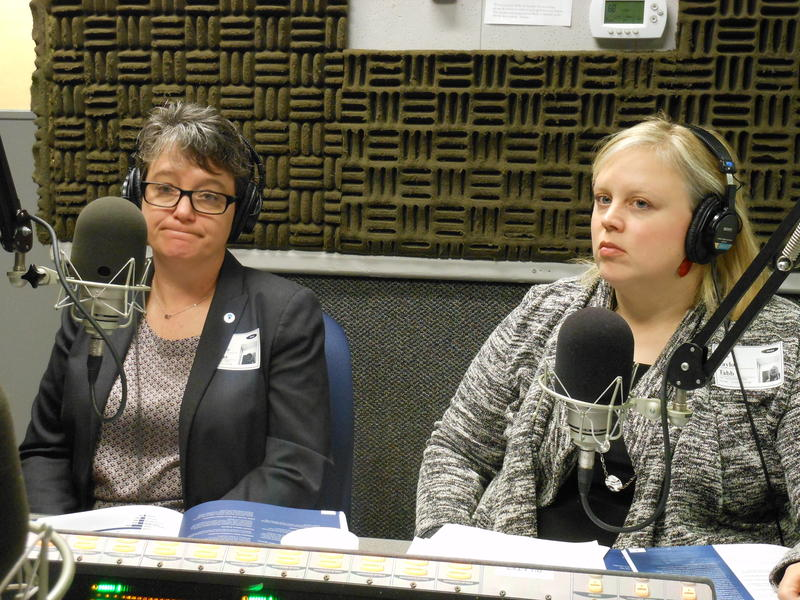 Taylor Tabb (right) of the Georgia Coalition Against Domestic Violence and Jennifer Thomas of the Georgia Commission on Family Violence. speaking with WABE's Denis O'Hayer in March 2016.