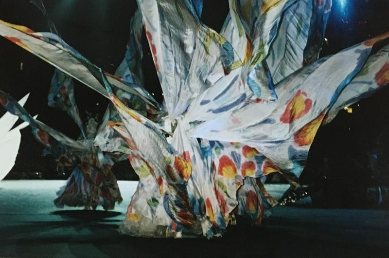 Lee Harper wore giant wings as a Southern spirit in the opening ceremony.