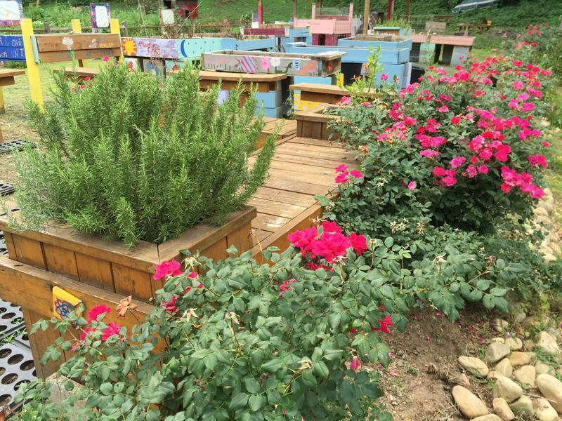 WALT has created a community garden in one of its English Avenue properties.