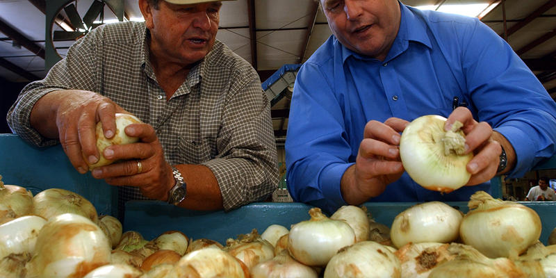 R. T. Stanley, a well-known Vidalia onion grower, talks about the 25th anniversary of the Vidalia onion trademark and the onion's history in Georgia today on ''Closer Look.''