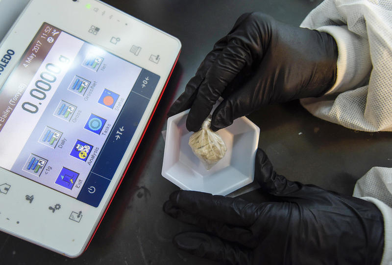 "A forensic chemist prepares a sample of the drug ""gray death"" to be weighed at the crime lab of the Georgia Bureau of Investigations in Decatur earlier this month."