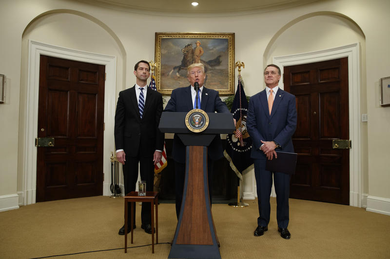 President Donald Trump, flanked by Sen. Tom Cotton, R- Ark., left, and Sen. David Perdue, R-Ga., speaks at the White House on Aug. 2 during the unveiling of legislation that would place new limits on legal immigration.