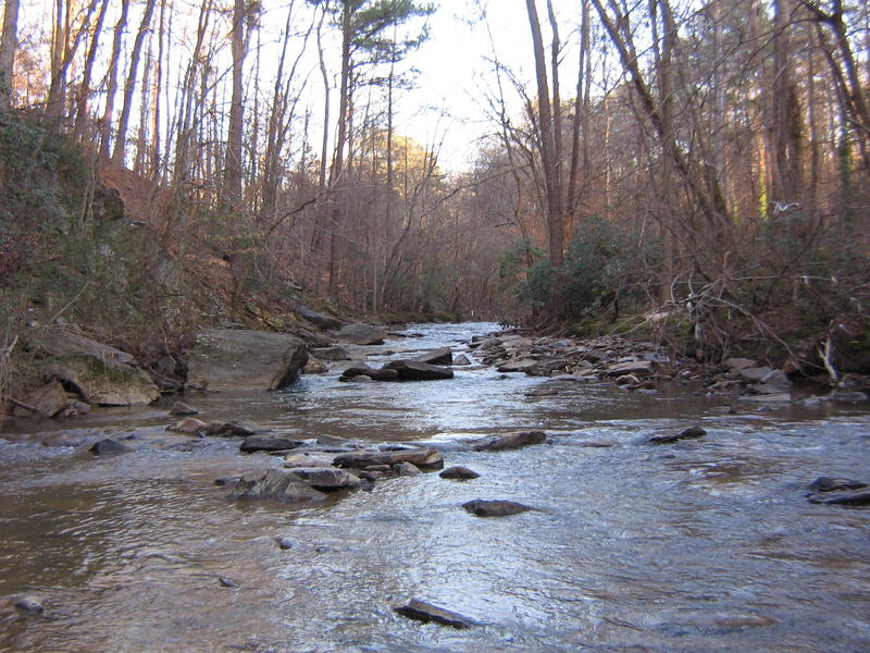 DeKalb County officials say the spill happened last week along a tributary to Nancy Creek Basin in Brookhaven.