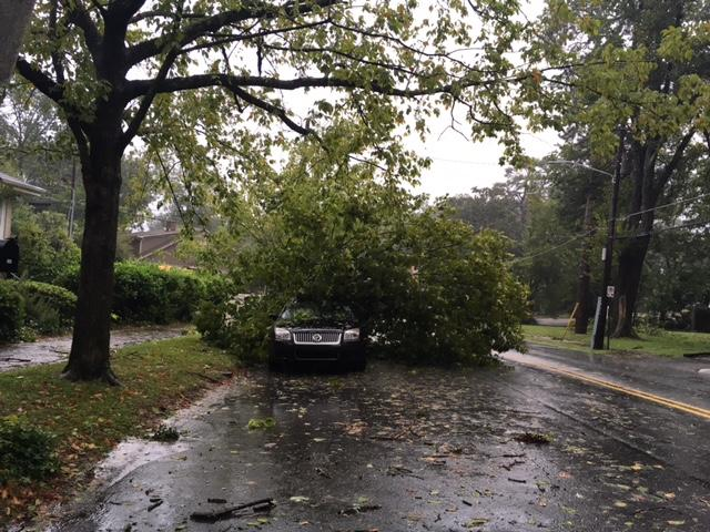 Downed trees from Tropical Storm Irma caused damage throughout metro Atlanta on Monday.