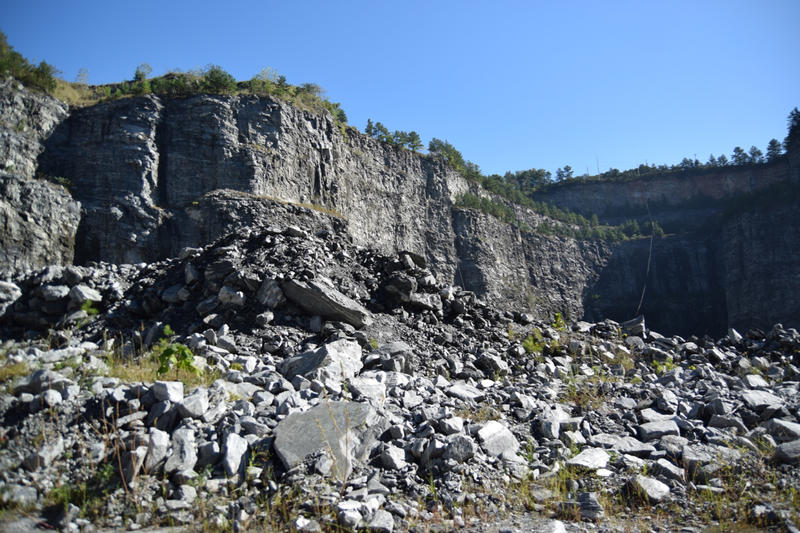 The granite that was mined from this quarry was used for some of Atlanta's roads and buildings.