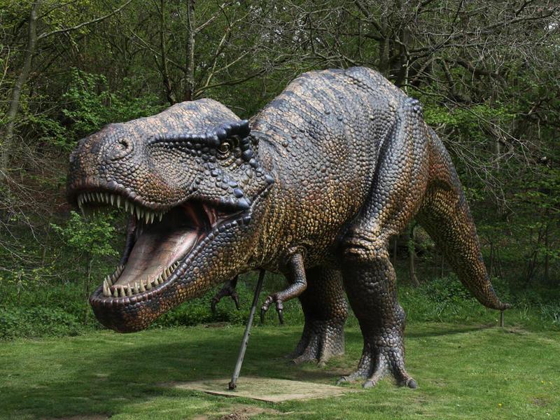 Dinosaur Adventure- Weston Park, Lenwade, Norfolk