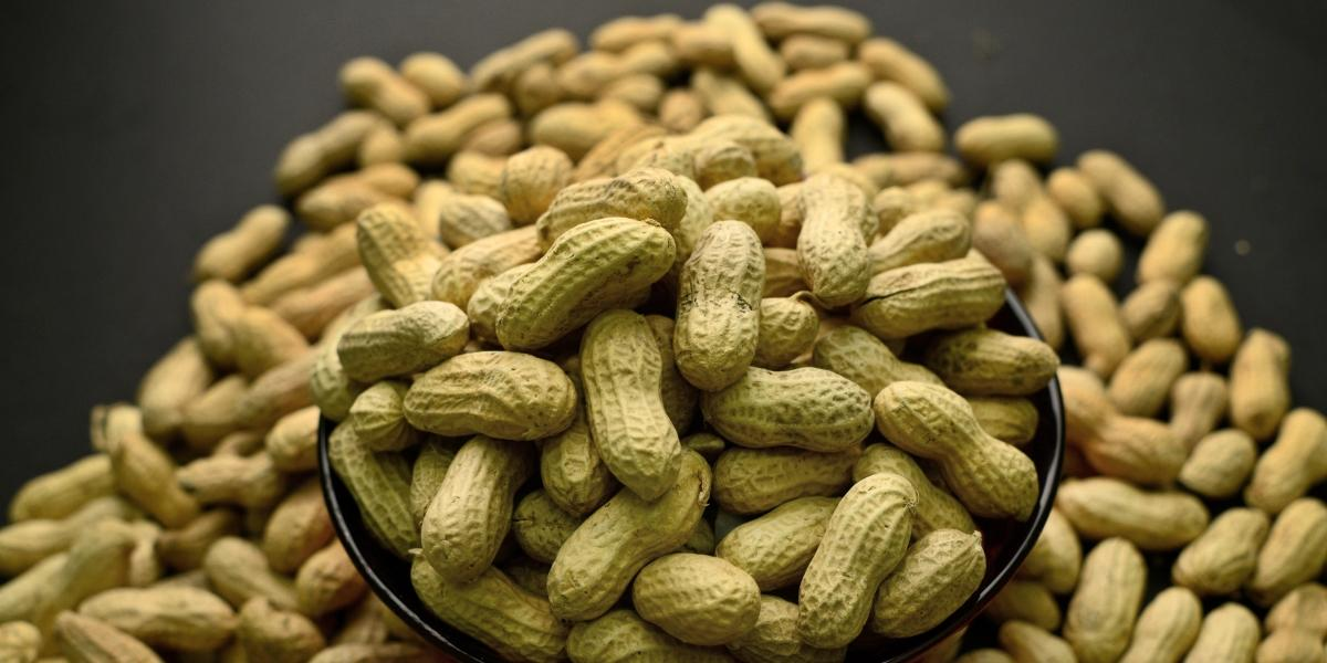 Georgia 'Peanut Poll' Becomes Country's Biggest Straw Poll