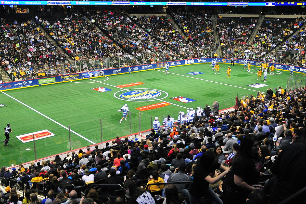 atlanta gets swarmed as pro lacrosse team moves to town wabe the minnesota swarm now swarm of the national lacrosse league holds court