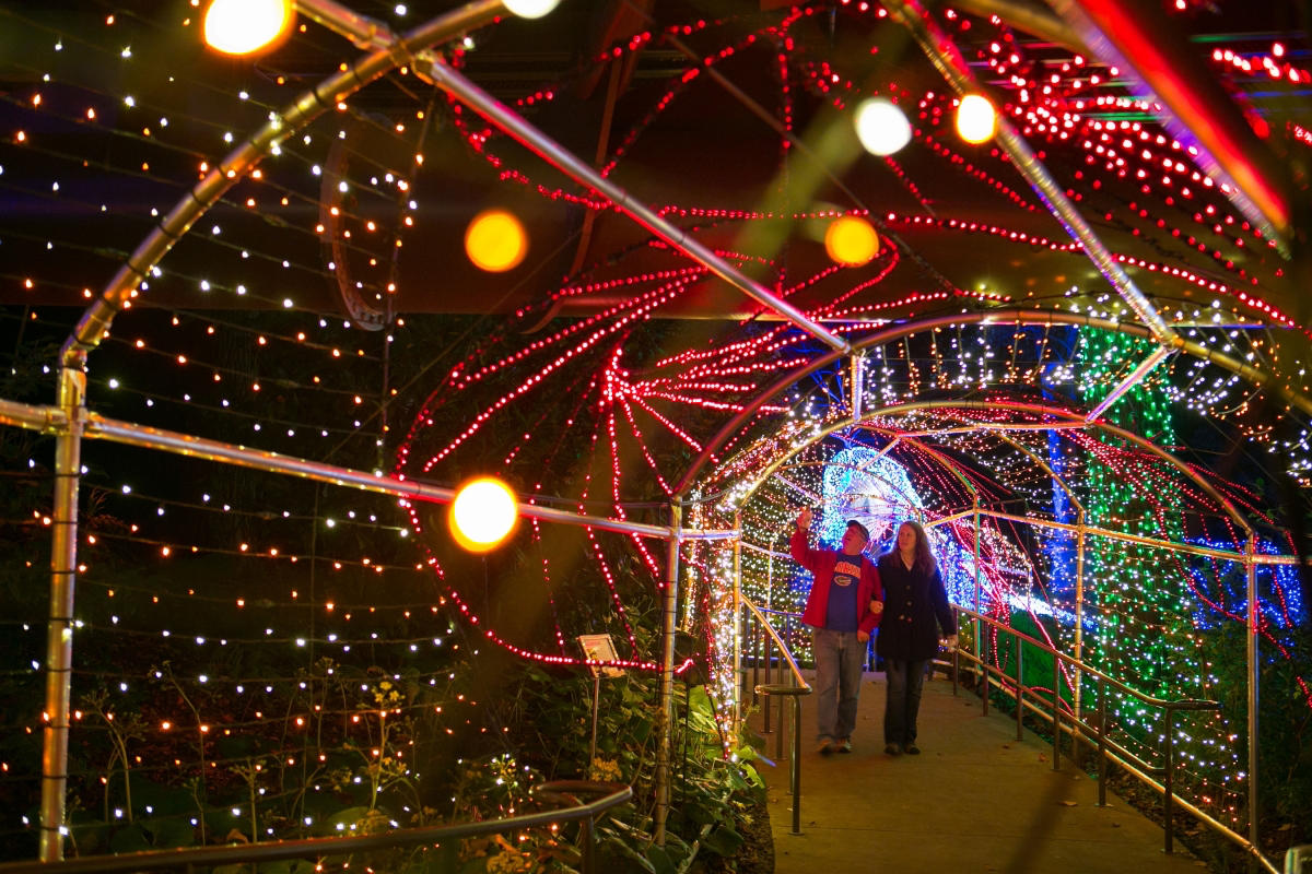 Atlanta botanical garden christmas lights coupon : Coupon rodizio ...