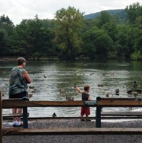 People of all ages enjoy feeding the waterfowl at Webster Pond in Syracuse.