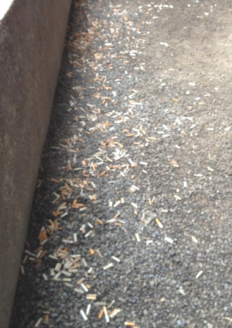 The policy will prohibit smoking outdoors on SU campus, reducing cigarette litter around places such as Bird Library.