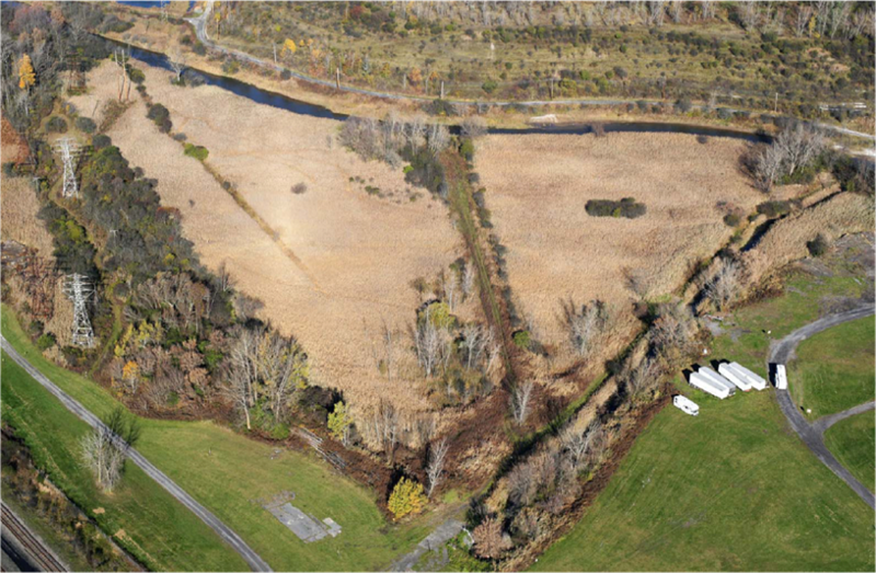 What Geddes Brook and wetlands looked like before restoration.
