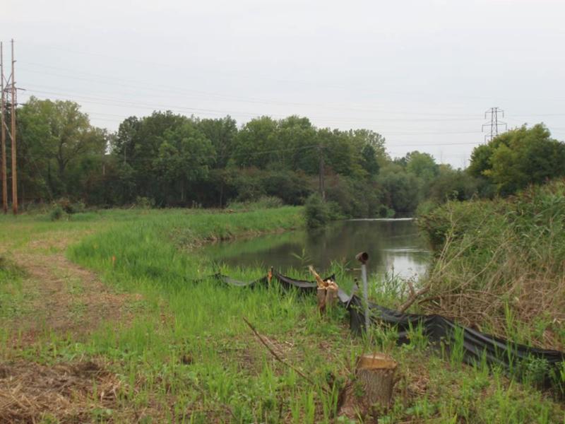 Geddes Brook wetlands before restoration.