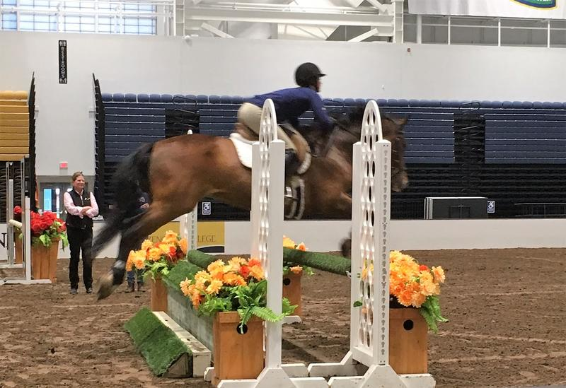 Keeley and Twister in mid-jump.