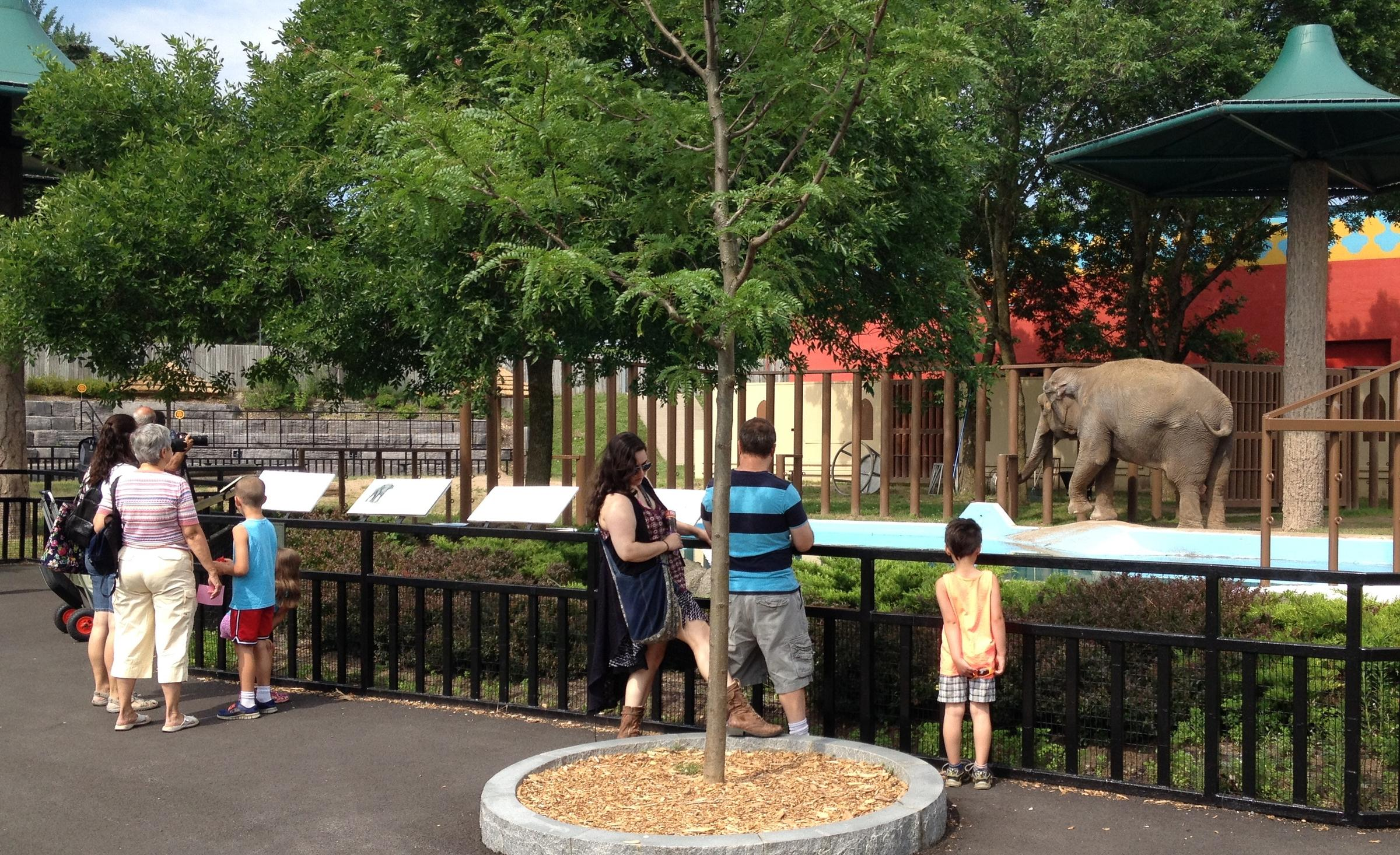 the friends of rosamond gifford zoo plan to add 13 million dollars