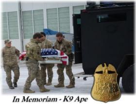Memorial service held for fallen K9 officer Ape.