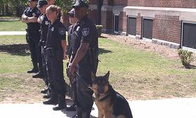 """Members of the Springfield Police Department K-9 unit at a community event at the White Street Elementary School. The newest member of the unit """" Hunter"""" is with his partner Officer Tommy Horne"""