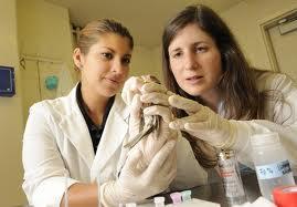 Dana Hawley (right)