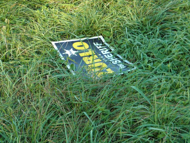 A forgotten campaign sign lost in the grass.