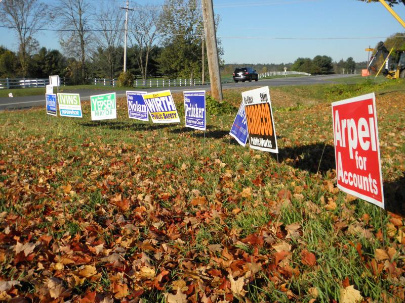 Many campaign signs line the side of the streets during election season.